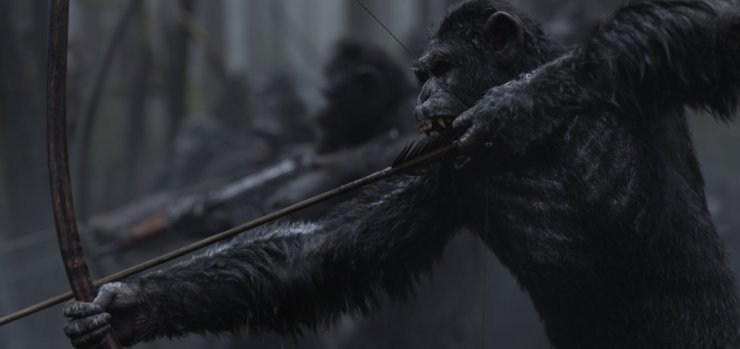 apes 4